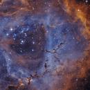 NGC2237 HA+S2+O3,                                Vincent