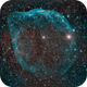 SH 2-308 Dolphin Nebula,                                Ricardo Pereira