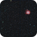 an old m35 and ngc 2174 image,                                Stefano Ciapetti
