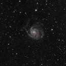 The Pinwheel Galaxy (M101),                                David Stephens