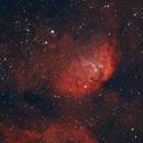 Sh2-101 Tulip Nebula,                                Robert Browning