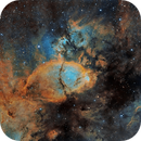 IC 1795,                                DDS_Observatory