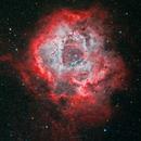 Rosette Nebula,                                JMDean