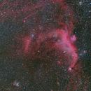 IC 2177 Seagull Nebula wide field,                                Toshiya Arai