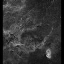 Tulip Nebula Sh2-101 in Ha,                                Göran Nilsson