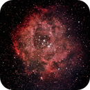 Rosette Nebula with Orion ED80,                                Victor Land
