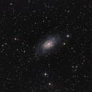 NGC 2403,                                Fredéric Segato