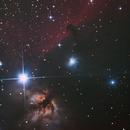 Horse Head Nebula Crop,                                Dan Pelzel