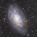 M33 - Triangulum Galaxy,                                Darius Kopriva