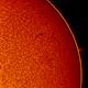 2018.05.09 Sun H-Alpha mushroom prominence,                                Vladimir
