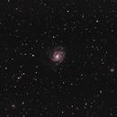 Pinwheel Galaxy,                                Kyle Floros