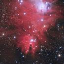 Cone Nebula widefield,                                Dave Weixelman