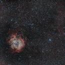 Monoceros Wide Field (Rosette Nebula + Christmas Tree Cluster + Cone Nebula),                                Mike Sheffler