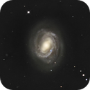 M58,                                jelisa