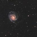 M101 - RASA 11,                                Andrew Marjama