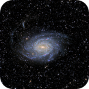 NGC 6744 - HaLRGB,                                Niall MacNeill