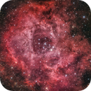 NGC2244 Rosette Nebula,                                Jerry Huang