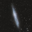 NGC 55,                                Pleiades Astrophotography Team