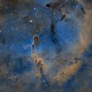 IC 1396 - Elephant Trunk Nebula,                                Michel Makhlouta