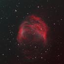 Abell 21 (Medusa Nebula) in HOO,                                Bruce Donzanti