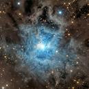 NGC 7023 IRIS Nebuloa,                                Franco Sgueglia &...