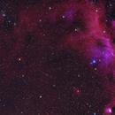 IC2177 Seagull Nebula - Bicolor and LRGB,                                equinoxx
