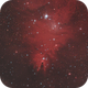 The Christmas Tree Cluster, Fox Fur Nebula and Cone Nebula in Monoceros (NGC 2264),                                Nadeem Shah