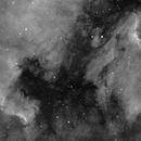 North America and Pelican Nebulae,                                Robin Manford