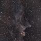 Nebulosa Testa di Strega - IC 2118,                                Alessandro Curci
