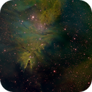 Cone Nebula (SHO),                                Goofi