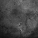IC 1396,                                Edoardo Perenich