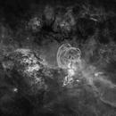 Starless NGC 3576,                                Colin
