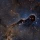 The Elephant Trunk Nebula (IC1396),                                Datalord