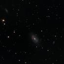 NGC 4725 and others,                                Markus Adamaszek