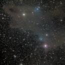 LBN535, the shark Nebula,                                Wolfsrudel