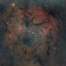 IC1396,                                Hideki