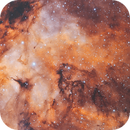 IC1318 - The Butterfly nebula (HOO),                                Chad Andrist