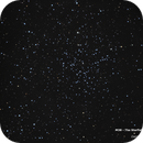 M38 - The Starfish Cluster,                                Damien Cannane