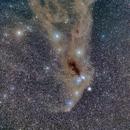 Corona Australis Molecular Complex,                                Scotty Bishop