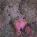 NGC 7000 North America Nebula & IC 5070 Pelican Nebula (Widefield),                                Bernhard Zimmermann