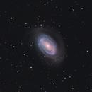 NGC4725 One Armed Spiral Galaxy,                                Sascha Schueller
