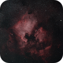North America Nebula (NGC 7000) and Friends,                                kreegan99
