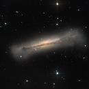 NGC3628 Galaxy,                                Sascha Schueller