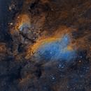 Prawn Nebula, IC 4628,                                S. Stirling
