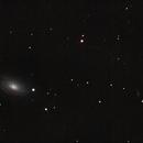 M63 : Galaxie du Tournesol,                                nzv