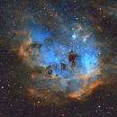 Tadpole Nebula,                                Sean Molony