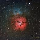 M20 Trifid Nebula,                                NewLightObservatory