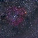 IC1396 Cepheus widefield,                                laser_jock99