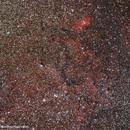 Tulip nebula and region,                                Ron Kramer