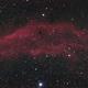 NGC 1499,                                Scotty Bishop